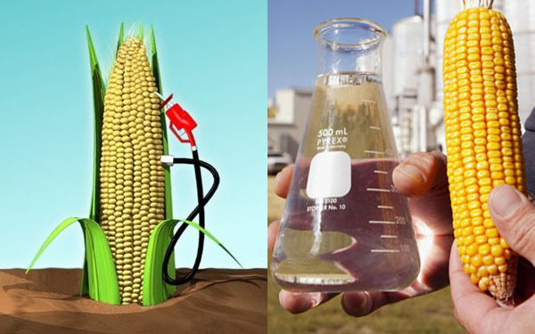Corn Ethanol Fuel