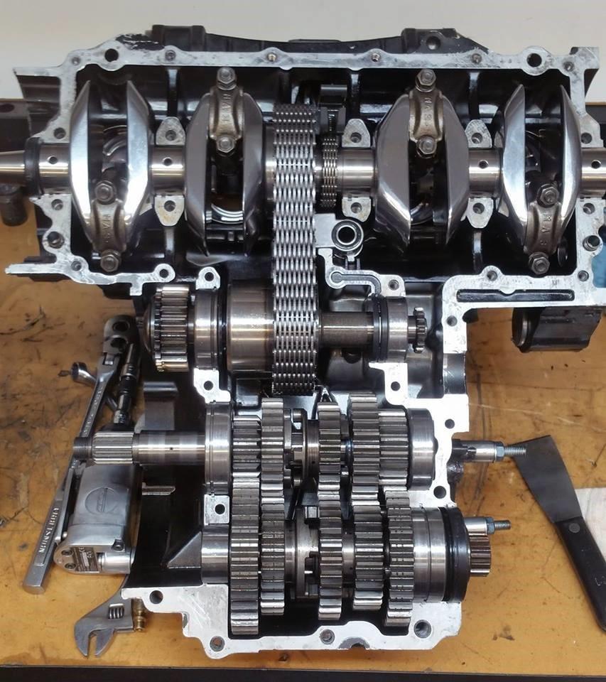 Honda CB-F Engine Rebuild Dennis Parrish